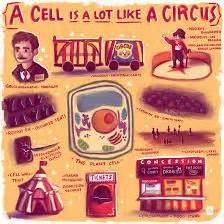 Cell City Analogy Examples Cell Analogy Google Search Geekin Out Pinterest