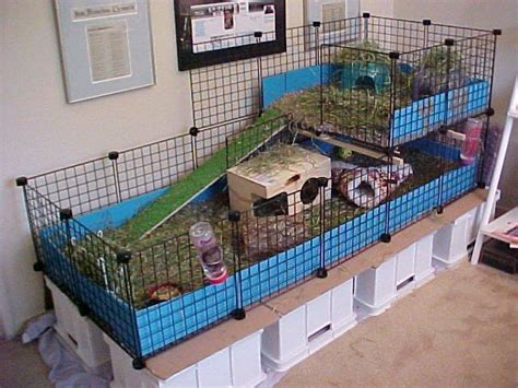 Creative Rabbit Hutches - image detail for rat cages for really cheap