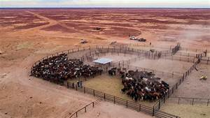 The second-largest cattle station on earth - for sale in ...