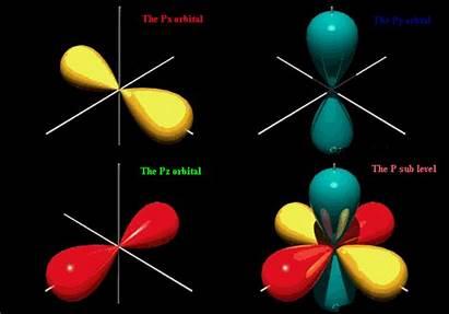 Orbitals Types Orbital Shape Chemistry Organic Atomic