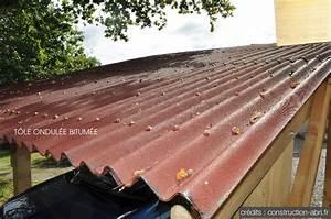 Tole Pour Toiture : plaque pour toit abri de jardin tole pour toiture prix ~ Premium-room.com Idées de Décoration