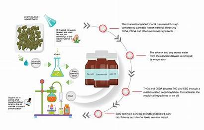 Extraction Process Oil Cann Technology Package Solutions