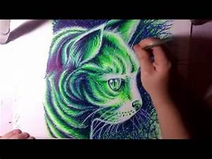 Drawing a Kitty Cat With Neon Sharpie Markers Timelapse