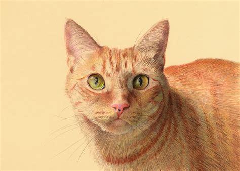 color ballpoint  drawings  nicolas  sanchez colossal