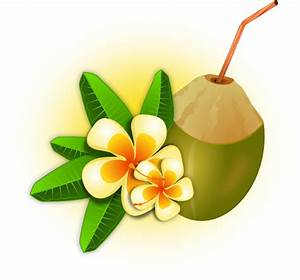 Tropical Flower With Coconut Drink Clip Art at Clker.com ...