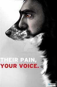 Animal Rights Poster 1 By Shaunaleavitt On Deviantart