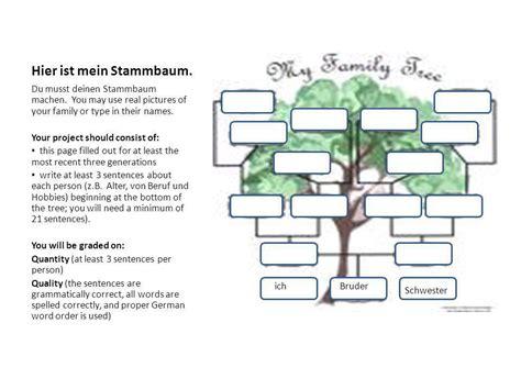 Mein Stammbaum  ppt herunterladen