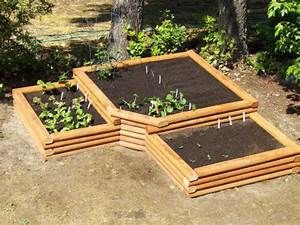 self sufficient living With vegetable garden design raised beds