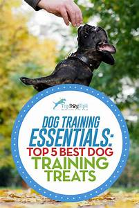 Top 5 Best Dog Training Treats in 2017 (small and low calorie)