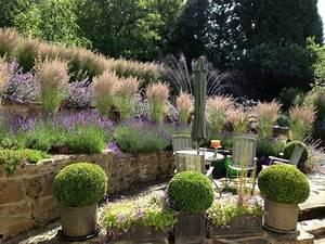 Gartengestaltung Pflegeleichte Gärten : gartengestaltung mit pflegeleichten pflanzen f r nat rlichen look des gartens garten ~ Sanjose-hotels-ca.com Haus und Dekorationen