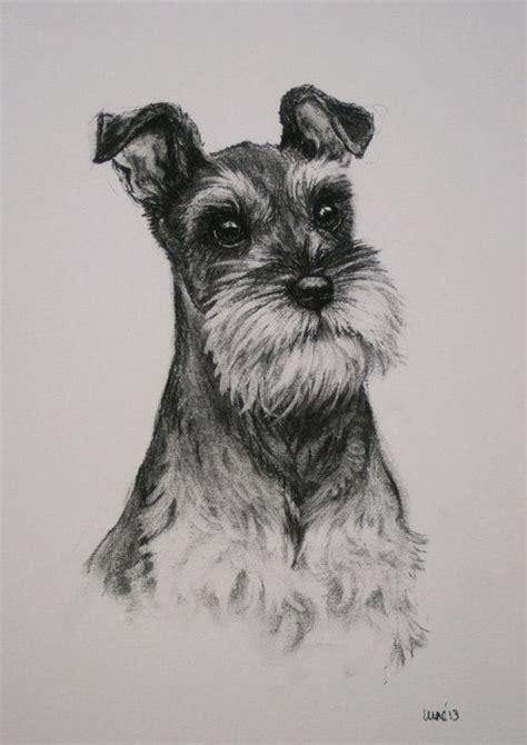 miniature schnauzer dog art print terrier dog wall art