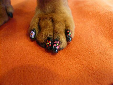 protege canapé 画像 ネイルは人間だけのものじゃない 犬の爪にもネイル naver まとめ