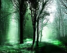 Dark Forest Desktop Backgrounds