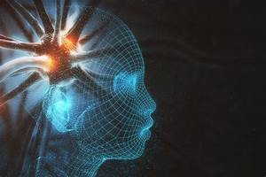 What Part Of The Brain Controls Memory