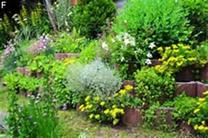 Blumen Für Steingarten : sch ne steingartenpflanzen winterharte sorten f r sonne und schatten ~ Sanjose-hotels-ca.com Haus und Dekorationen