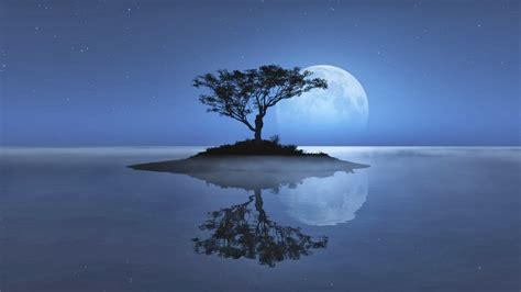 Cool Night Nature Backgrounds