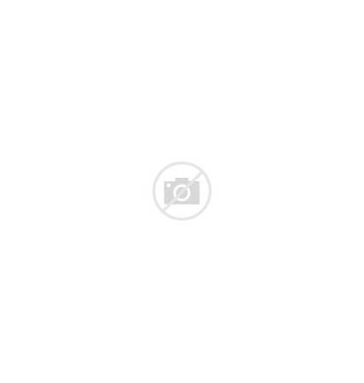 Mice Vector Four Different Mouse Colors Rat