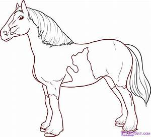 How to Draw a Horse, Step by Step, Farm animals, Animals ...