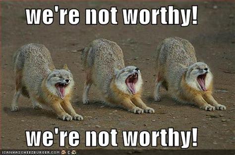We're Not Worthy! We're Not Worthy!