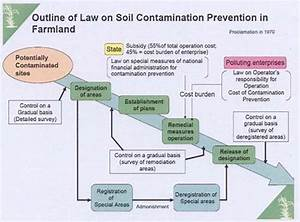 Heavy Metal Pollution Of Soil And A New Approach To Its