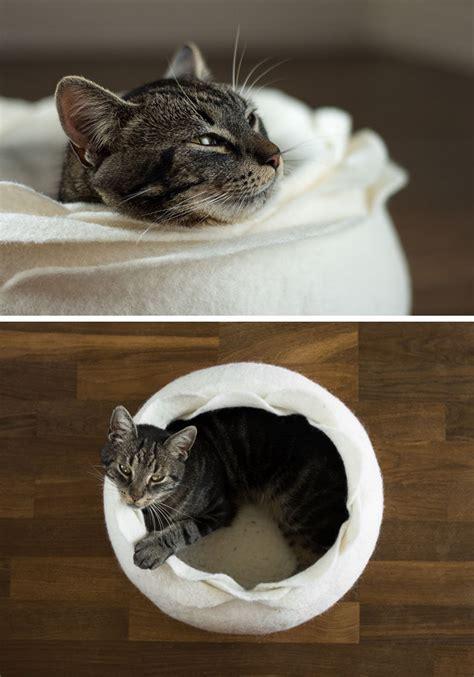 cat beds dont      cat bed contemporist