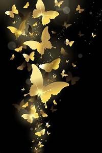 Mariposas butterflies …