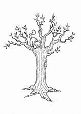 Wood Burning Beginners Designs Coloring Pages Patterns Tree sketch template