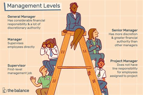 learn  management levels  job titles