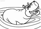 Hippo Coloring Pages Hippopotamus Cute Baby Printable Drawing Cartoon Cool2bkids Colouring Sheets Getdrawings Drawings Animals Face Animal Getcoloringpages Google sketch template