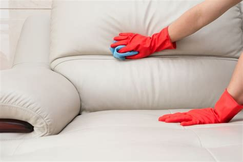 how to clean cloth sofa how to clean your house after it 39 s been invaded by cold or
