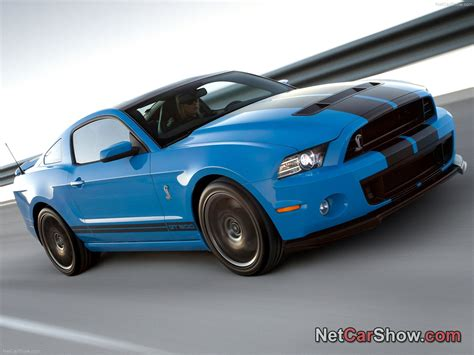 best mustang shelby shelby mustangs 20 pictures of new shelby mustang gt500
