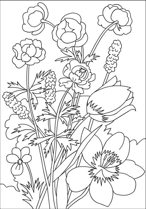 Nicoles Free Coloring Pages Flowers Coloring Page
