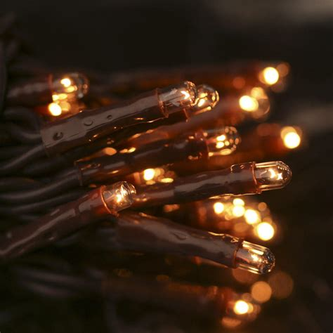 clear bulb and brown cord teeny string lights lights and