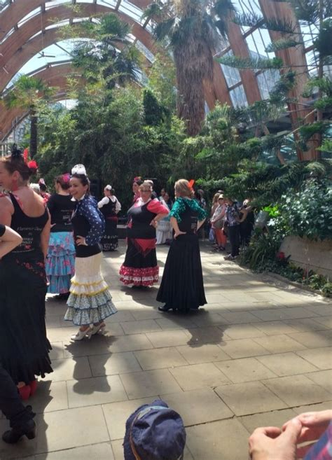 Pin by Helen Frances on Flamenco | Sidewalk