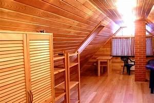 Fixation Lambris Pvc : clips de fixation lambris pvc travaux de renovation ~ Premium-room.com Idées de Décoration