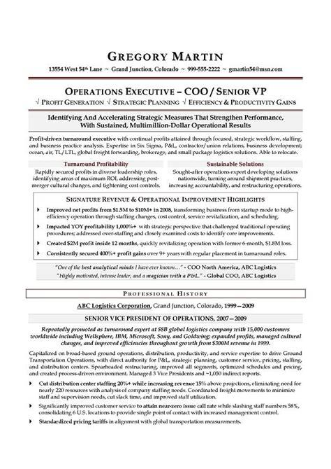 vp operations  sample resume executive resume writer