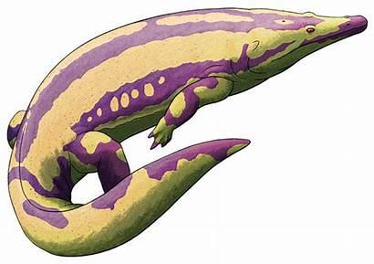 Amphibian August Amphibians Prehistoric Draws Nix Stuff