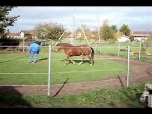 Gehrung Sägen Ohne Hilfsmittel : pferdekommunikation pferdeerziehung freies arbeiten ohne hilfsmittel youtube ~ Orissabook.com Haus und Dekorationen