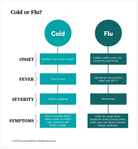 day  day guide  treating  cold   flu
