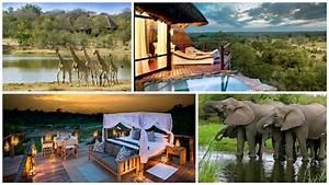 a dream wedding and safari honeymoon in south africa With honeymoon in south africa