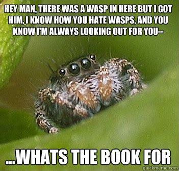 Spider Bro Meme - spider meme reneedezvous