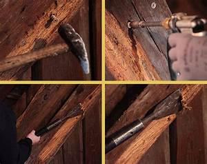 Traitement Bois Charpente : traitement des bois brionne dans l eure au havre ~ Edinachiropracticcenter.com Idées de Décoration