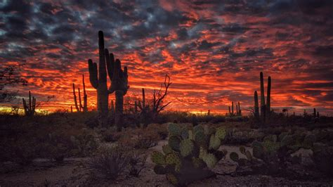 tucson arizona sunset flaming sky desert landscape