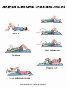 Abdominal Muscle Strain Rehabilitation Exercises ...