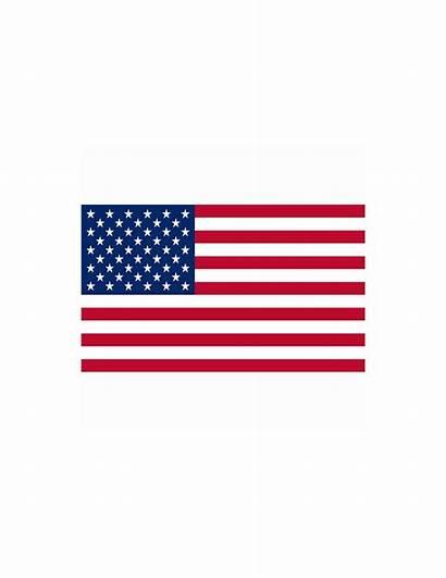 Bandiera Usa Uniti Stati Bandiere America Fosco