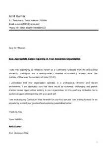 cover letter cv amit cv ca inter with cover letter