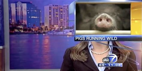 Best Tv News Bloopers Of 2014