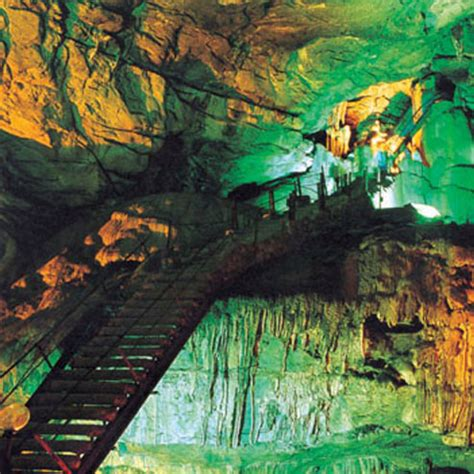 formation cuisine borra caves