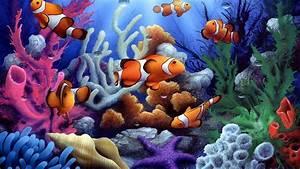 [37+] Colorful Underwater Fish Wallpaper on WallpaperSafari