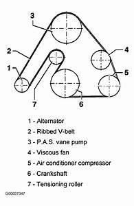 2002 Volkswagen Passat Serpentine Belt Routing And Timing